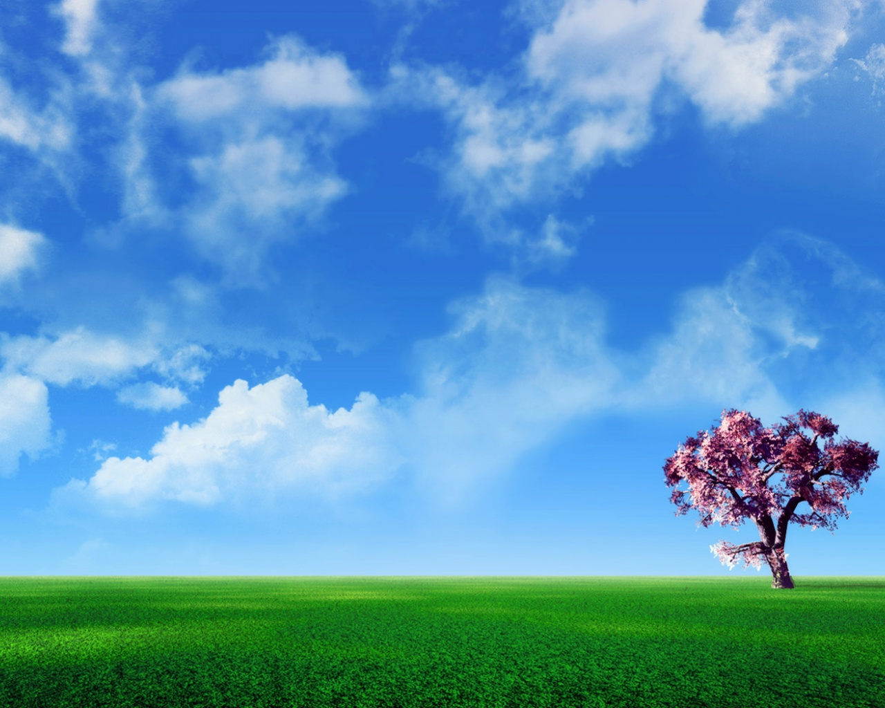 click to free download the wallpaper--Beautiful Images of Nature Landscape, a Pink Tree Under the Blue Sky, Gentle Wind Blowing