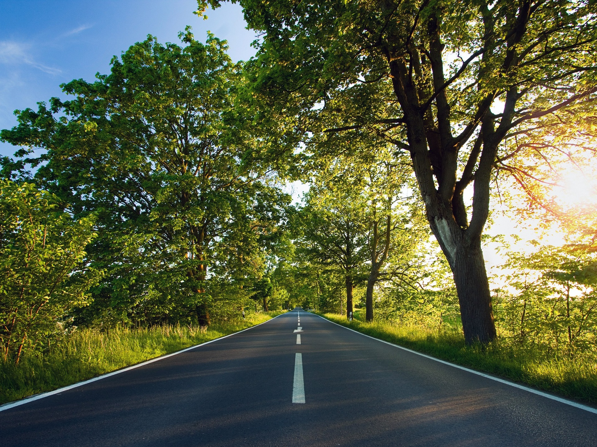 click to free download the wallpaper--Beautiful Images of Nature Landscape, a Straight Road, Tall Green Trees Alongside, Summer Scene 1920X1440 free wallpaper download