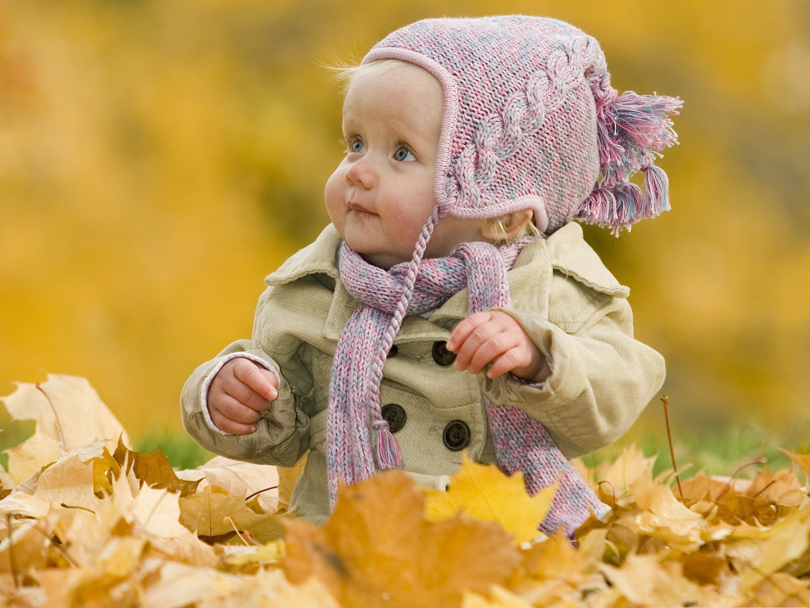 click to free download the wallpaper--Cute Baby Image, Adorable Baby Outdoor, Surrounded by Brown Leaves 1600X1200 free wallpaper download