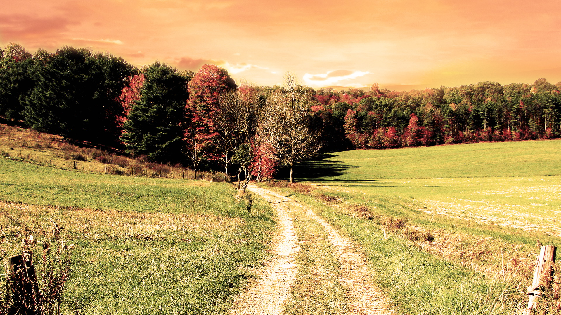click to free download the wallpaper--Free Download Natural Scenery Picture - A Narrow and Earthy Road, the Orange Sky, Must be a Hot Day 1920X1080 free wallpaper download