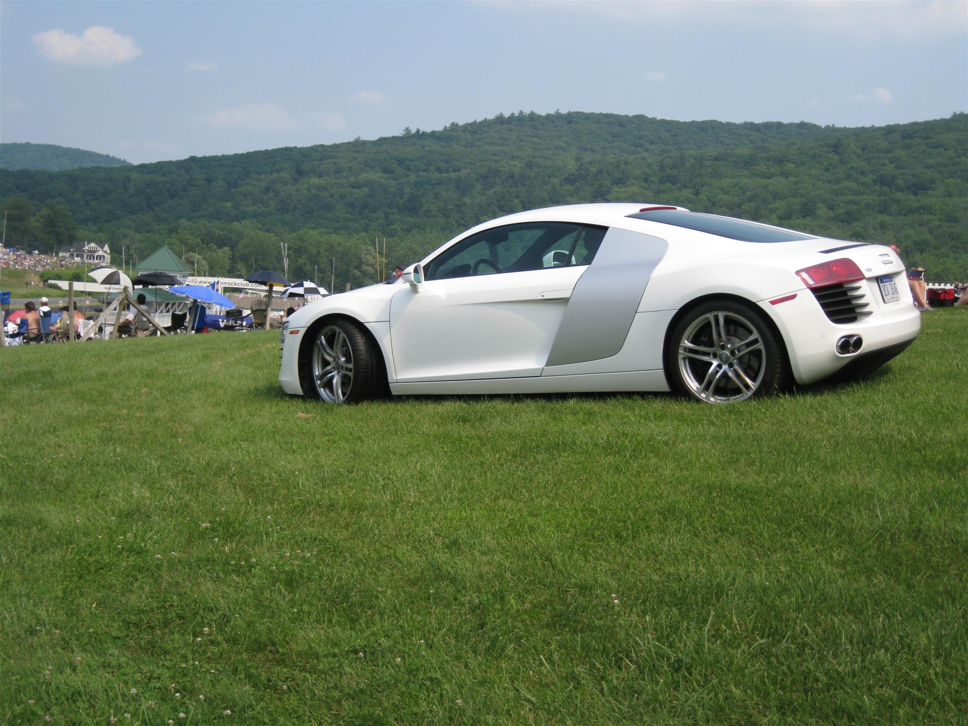 click to free download the wallpaper--Free Super Cars Image, Audi R8 on Green Grass, Smooth Lines, Strike Quite an Impression 1920X1440 free wallpaper download