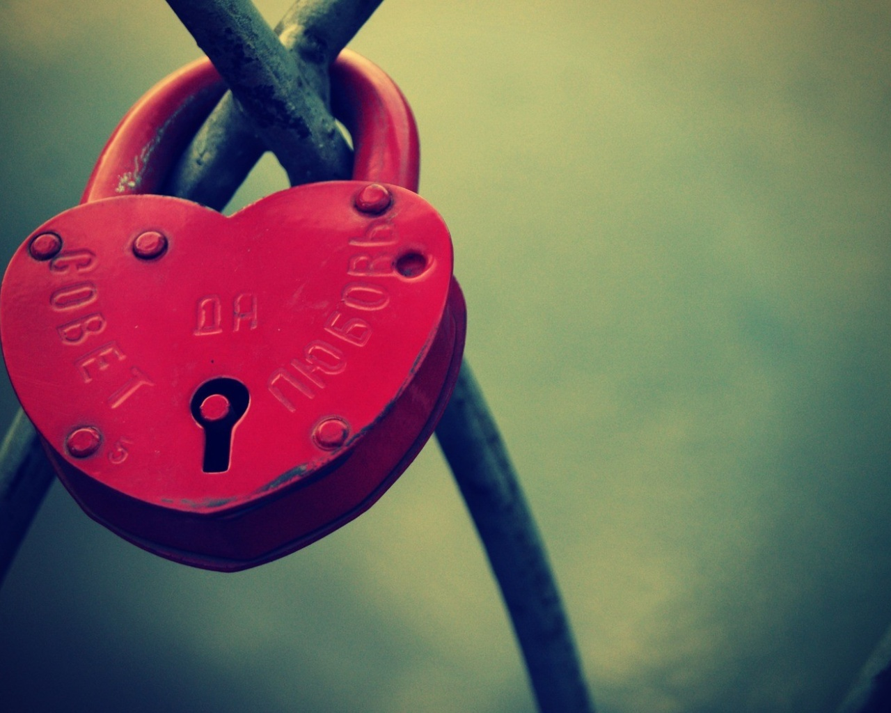 click to free download the wallpaper--Images of Romance, Heart-Shaped Lock on Green Background, Shall Move Lots of People 1280X1024 free wallpaper download