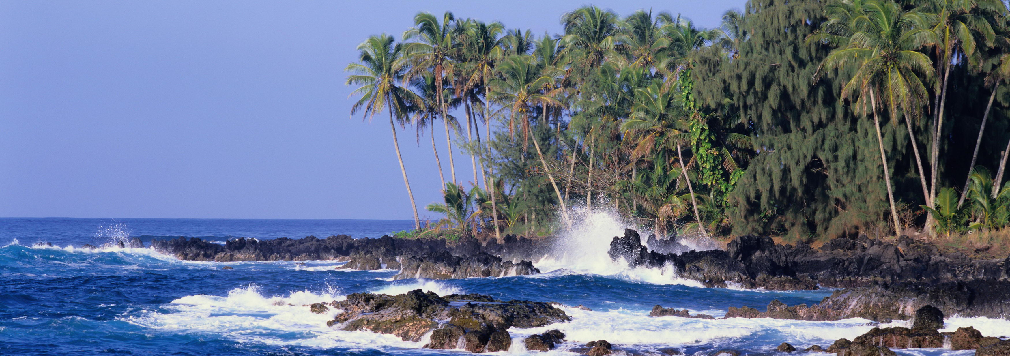 click to free download the wallpaper--Natural Scenery images - Coconut Trees by the Beach, the Incredibly Blue Sky and the Sea 3500X1234 free wallpaper download