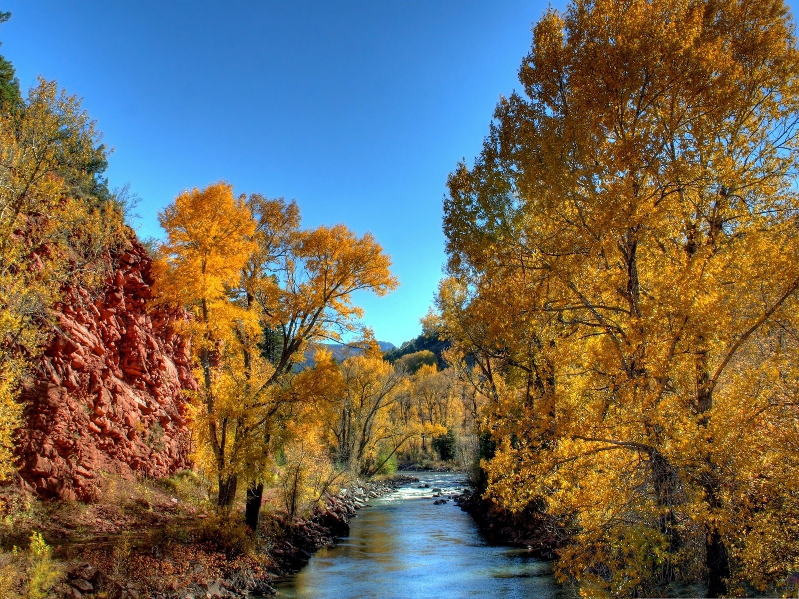 click to free download the wallpaper--Nature and Trees, Brown Trees Alongside the River, Autumn Scenery 1600X1200 free wallpaper download