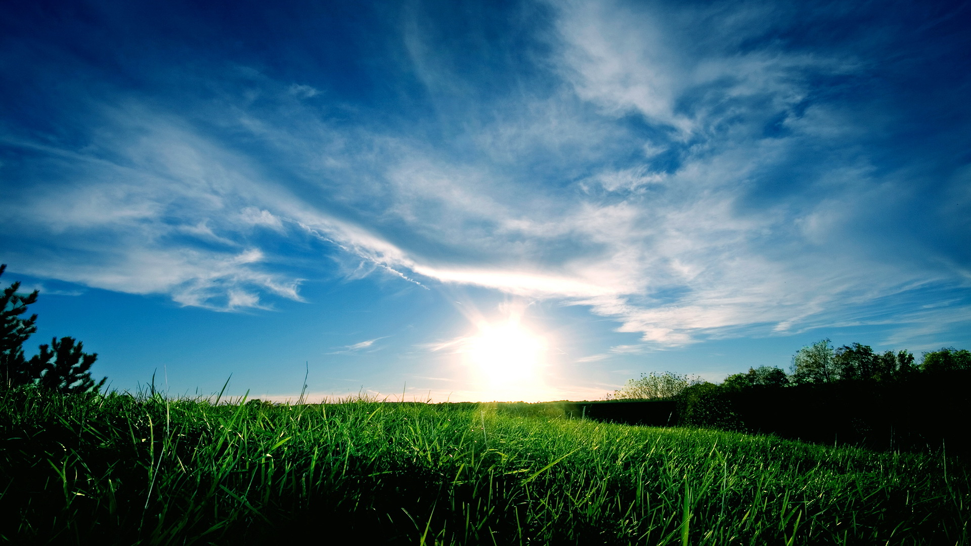 click to free download the wallpaper--Pics of Natural Scene - A Full Eye of Green Grass, the Rising Sun and the Blue Sky, Combine an Incredible Scene  1920X1080 free wallpaper download