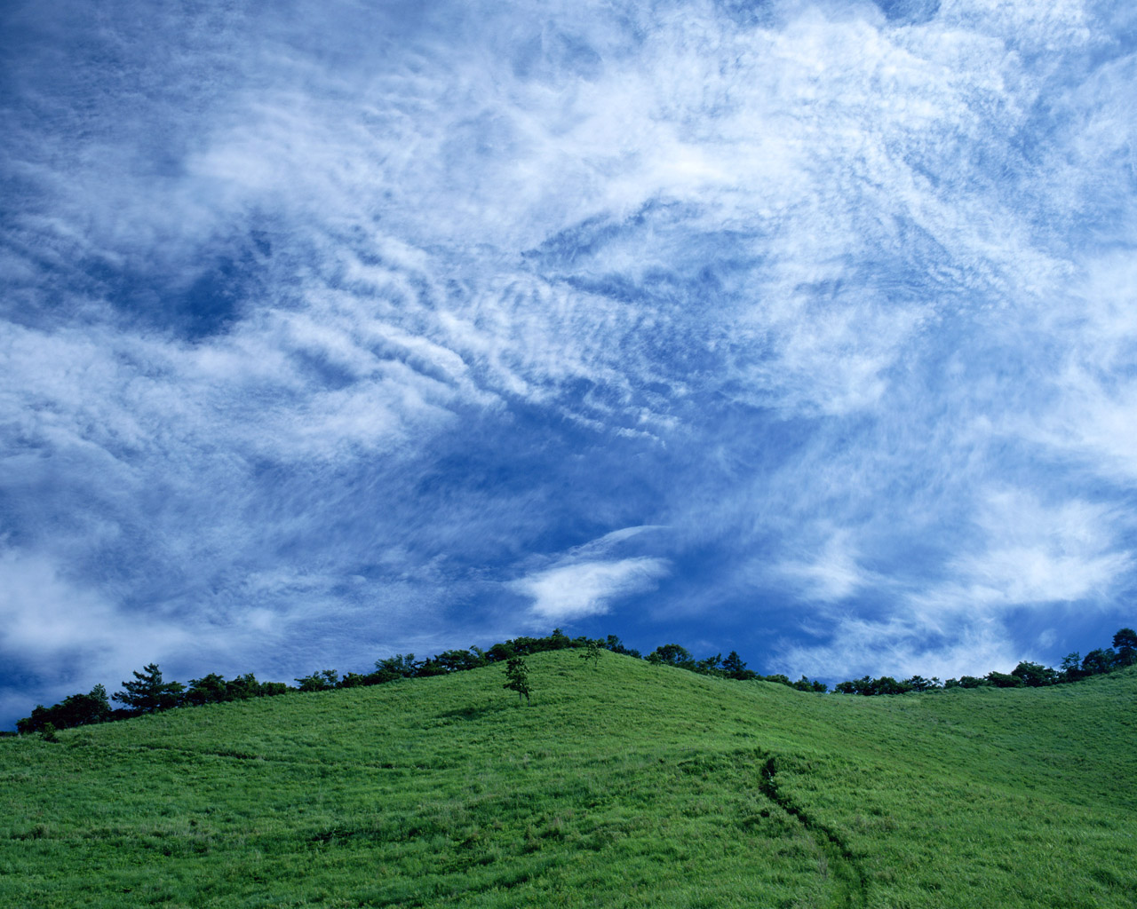 click to free download the wallpaper--Pics of Natural Scenery, Green Hills Under the Blue and Cloudless Sky, Green Scene