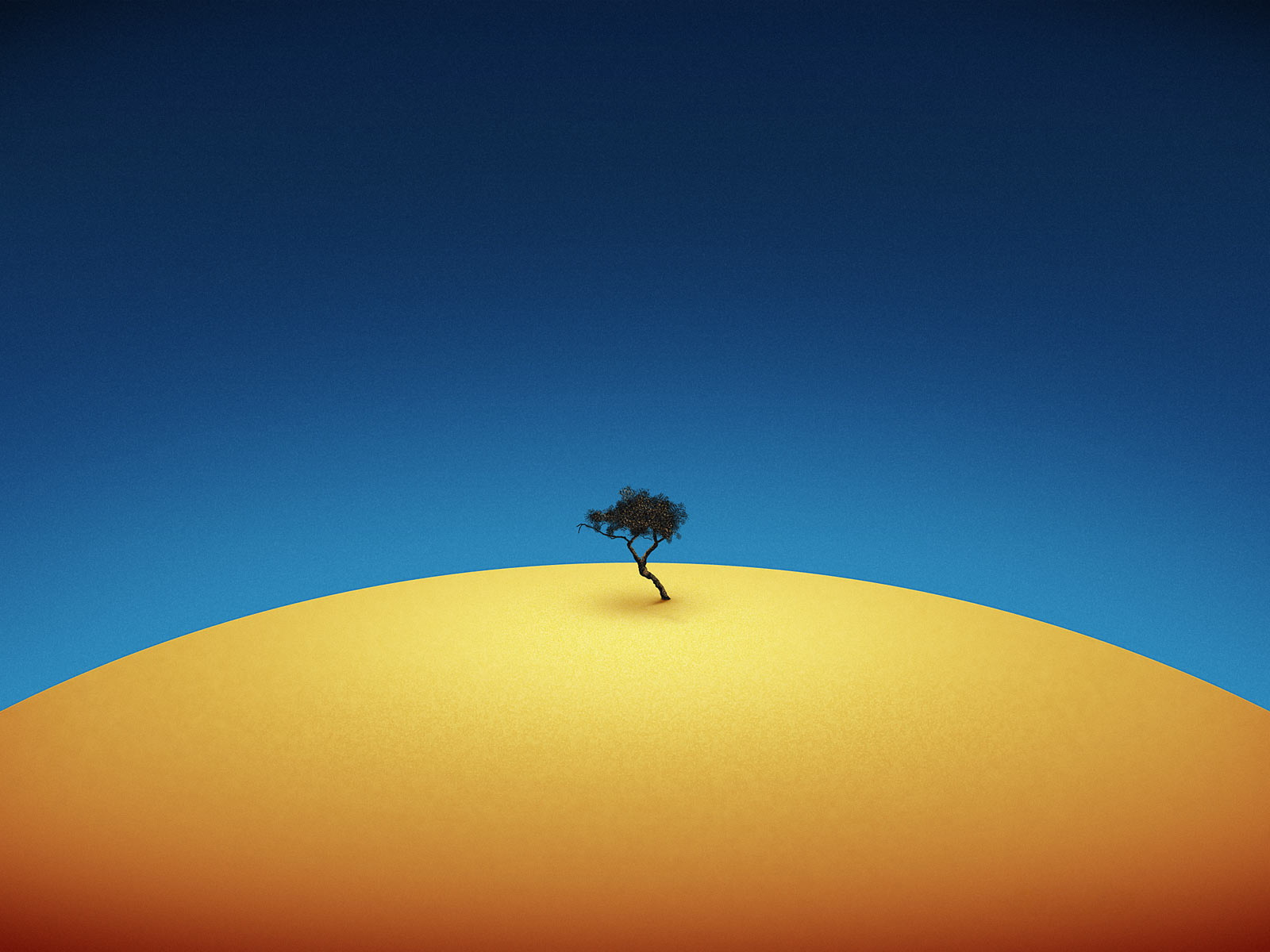 click to free download the wallpaper--Pics of Nature Landscape, an Isolated Tree Among Yellow Desert, the Blue Sky