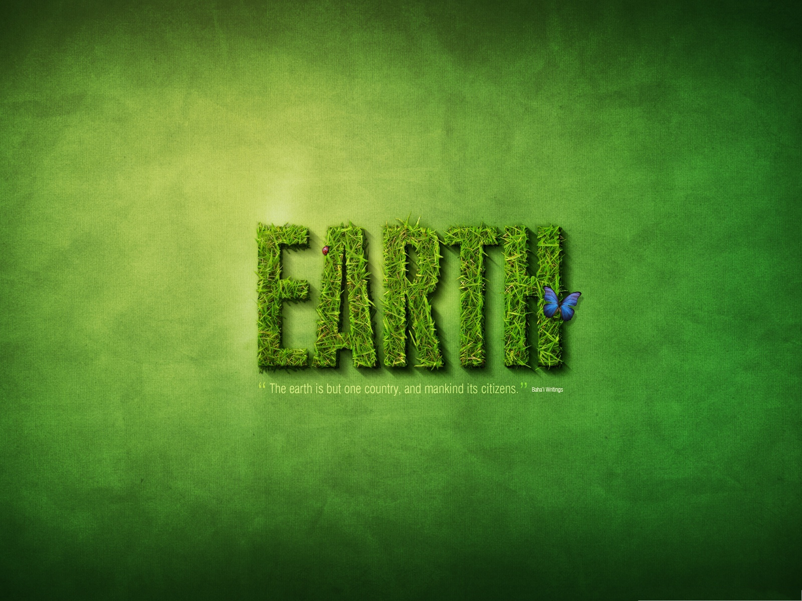 click to free download the wallpaper--Wallpaper Desktop Computer - Green Grass Text Effect, Encouraging Man to Protect the EARTH! 1600X1200 free wallpaper download