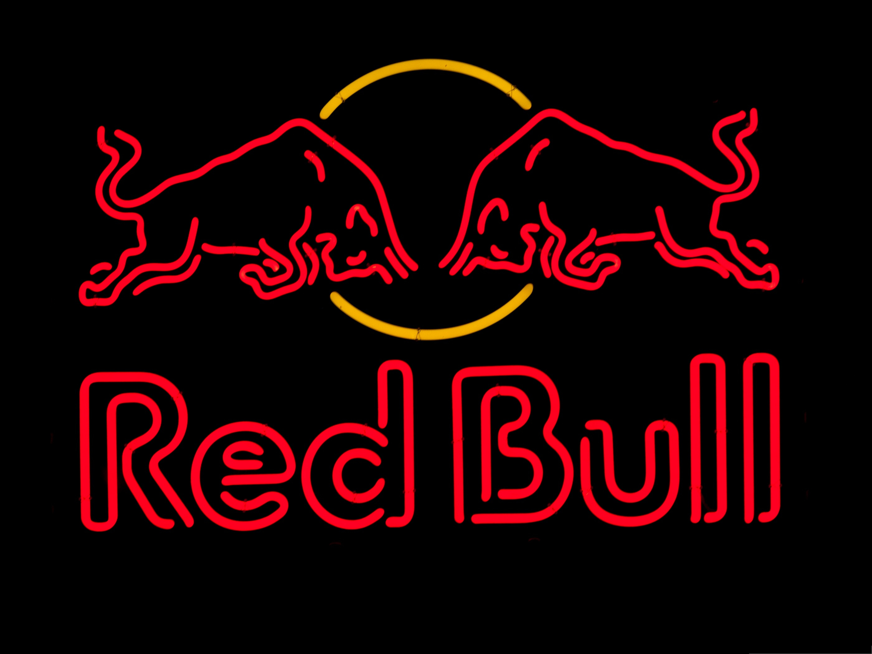 click to free download the wallpaper--Wallpaper Desktop Computer - Red Bulls Meeting Each Other, Head Facing Head 2800X2100 free wallpaper download