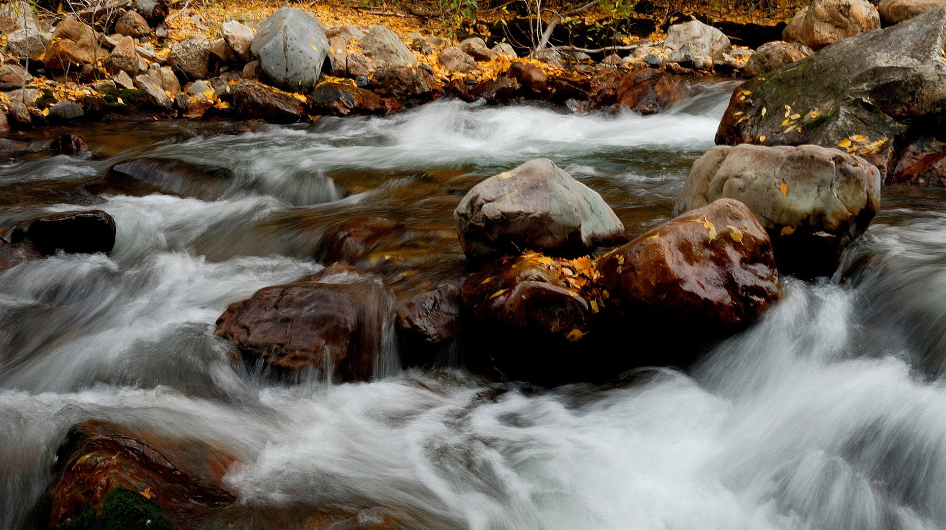 click to free download the wallpaper--beautiful scenery pictures - River in Rapid Flow, Big Yellow Stones in the Middle, a Clear and Moving Scene 1920X1080 free wallpaper download