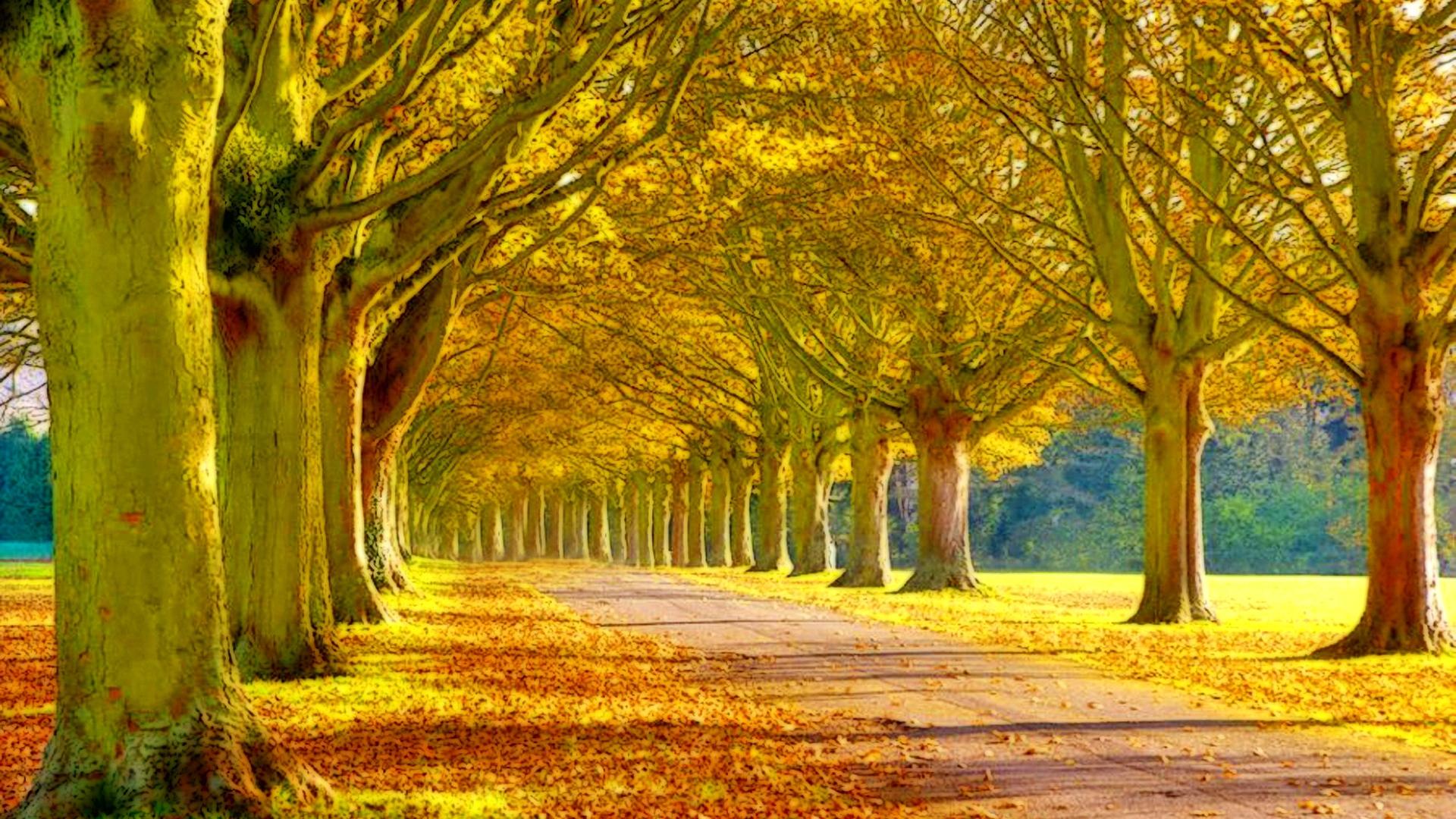 Pin Autumn Beautiful Fall Wallpapers Memes On Pinterest