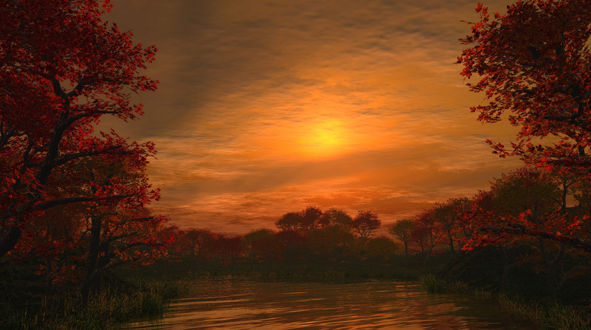 click to free download the wallpaper--natural scene photos - Maples Trees Alongside the Peaceful River, the Rising Sun, an Impressive Scene 1920X1080 free wallpaper download