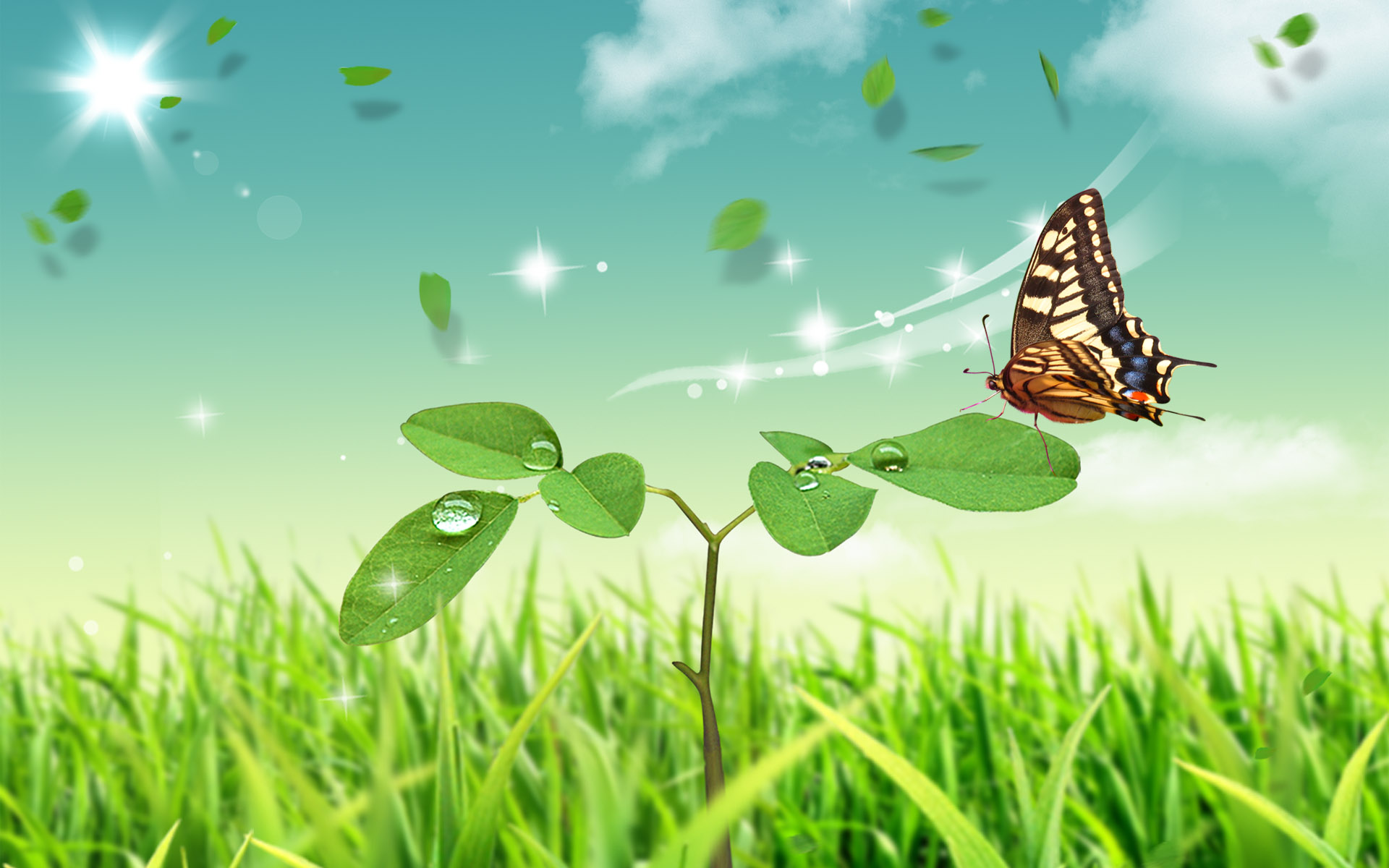 Natural scenery wallpaper butterfly and green plants click to