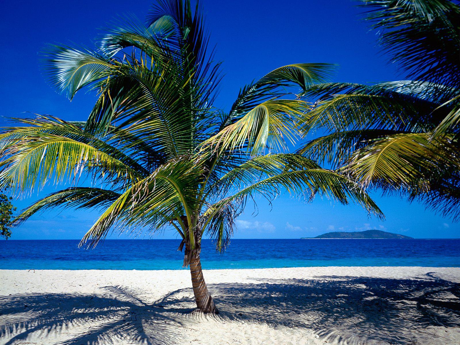 Beautiful Beach Scenery Free Wallpaper World