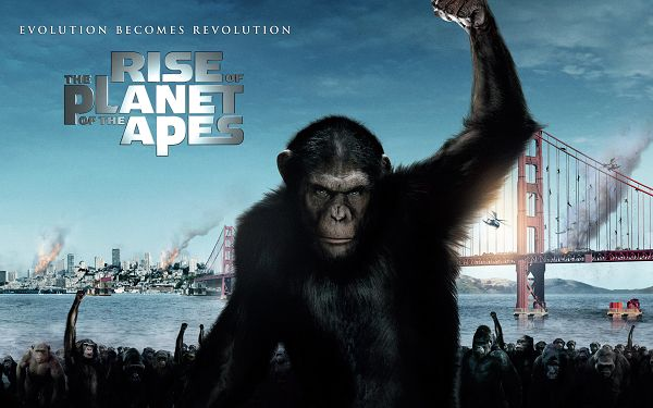 click to free download the wallpaper--2011 Rise of the Planet of the Apes Post in 2560x1600 Pixel, Large Enough to be a Great Fit, Man, Take Care of Yourself - TV & Movies Post