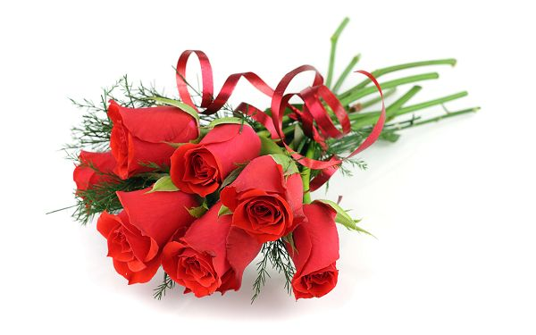 click to free download the wallpaper--A Bouquet of Fresh Red Roses, It is the Best Gift and Language to Your Lover, Just Give It to Her - Natural Roses Wallpaper