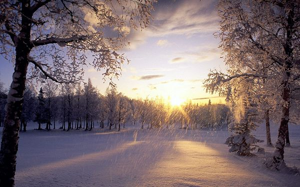 click to free download the wallpaper---A Heavy Snow is Falling, No Man is Out, Sunlight Can Soon Melt the Snow and Drive the Coldness - Snowy Natural Scenery Wallpaper