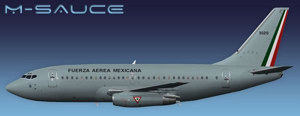 click to free download the wallpaper--Aeroplane Shows Image, Mexican Air Force Boeing 737-200 in the Fly