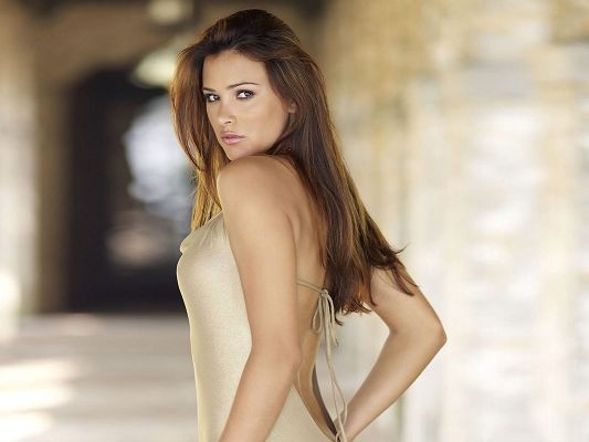 Alina Vacariu Wallpaper, in Beautiful Long Dress, Turning Face Back, Wow!