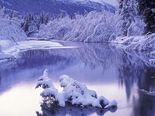 Amazing Image of Nature Landscape, Peaceful Ostrov River, Snow-Capped Plants Alongside