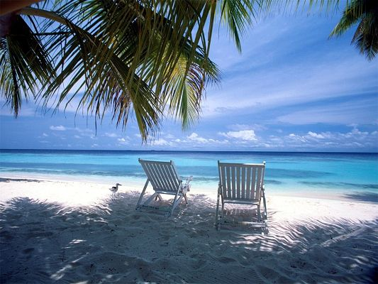 Amazing Landscape Image, Two Chairs by the Beachside, the Clear Sea and the Blue Sky