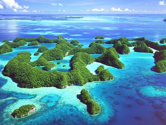 click to free download the wallpaper--Amazing Landscape of Nature, Republic of Palau, Green Plants Afloat on the Sea, the Blue Sky