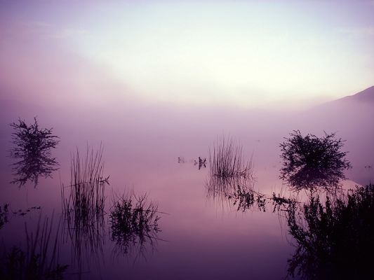Amazing Pics of Nature Landscape, the Lake Scene in the Morning, Misty and Foggy Beauty