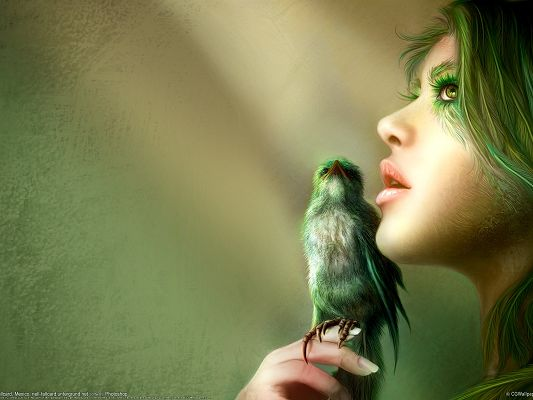 click to free download the wallpaper--Amazing TV Show Pics, Fantasy Girl and Bird, Green and Mysterious Atmosphere