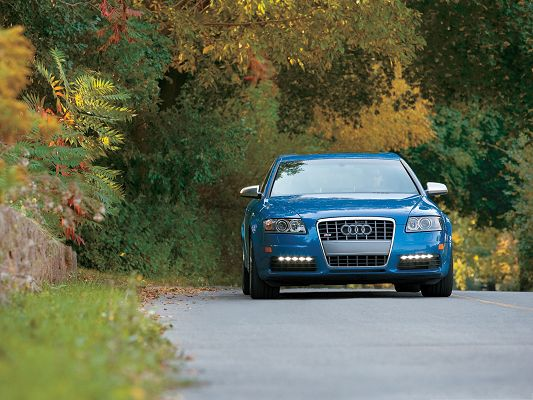 click to free download the wallpaper--Audi S6 Sedan Car, Blue Super Car in the Run, Yellow Leaves, Typical Autumn Scene