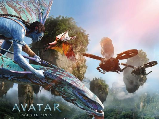 Avatar International Poster in 1024x768 Pixel, Avatar on His Dragon, a Safe and Wonderful Journey Can be Expected - TV & Movies Post