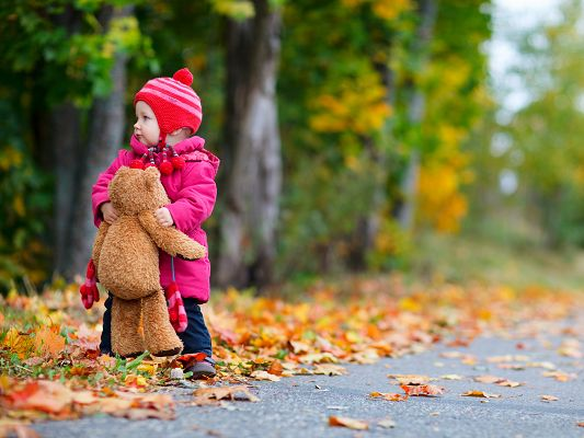 click to free download the wallpaper--Baby Girl Outdoor, Infant with Her Toy, Stay Outdoor in Autumn