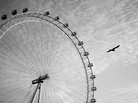 click to free download the wallpaper--Background Wallpaper Computer, Ferris Wheel Monochrome, an Eagle Flying By
