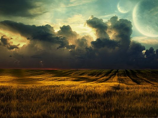 click to free download the wallpaper--Background Wallpaper for Computer, Yellow Field Under the Blue Sky, Amazing Nature Landscape