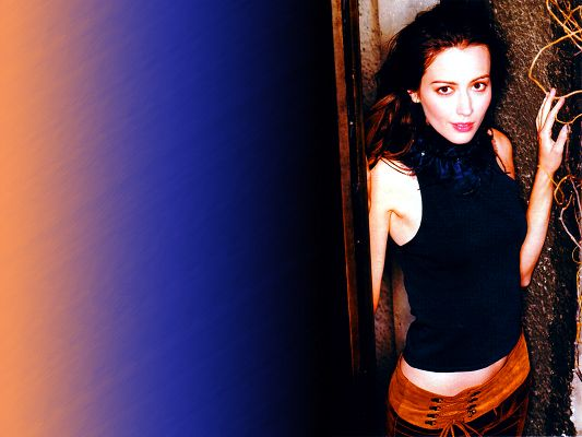 Beautiful Actresses Post, Amy Acker in Tight Suit, Snowy White Skin, a Blue Wall, Incredible in Beauty