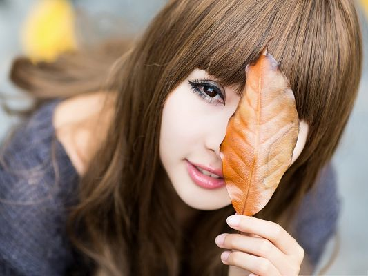 click to free download the wallpaper--Beautiful Girl Outdoor, Nice Girl in a Brown Leaf, Snowy White Skin