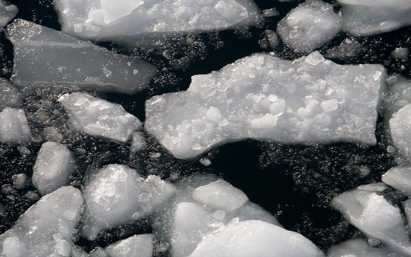 Beautiful Image of Natural Landscape, Afloat Ice, the Dark Sea, Incredible Look