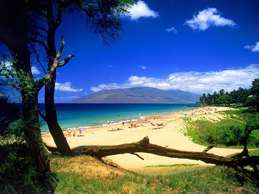 click to free download the wallpaper--Beautiful Images of Nature Landscape, Kihei Beach, Having a Great Time