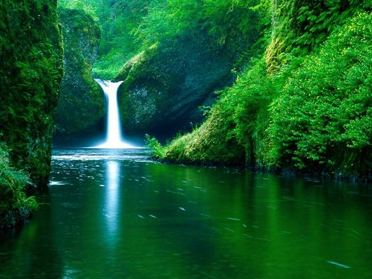 click to free download the wallpaper--Beautiful Landscape Images, Punch Bowl Falls Oregon USA, Green Scene, Incredible Look