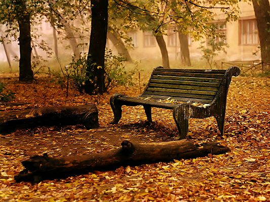 click to free download the wallpaper--Beautiful Landscape Images, an Old Bench, Yellow Leaves, Mist All Over