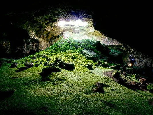 Beautiful Landscape of the World, Laba Tube Cave, a Full Eye of Green Scene, Impressive Look