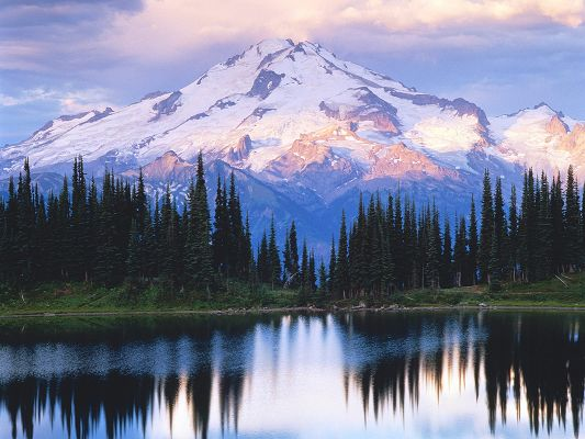 Beautiful Natural Landscape Photos, Pine Reflection, Snow-Capped Mountains, the Peaceful Sea