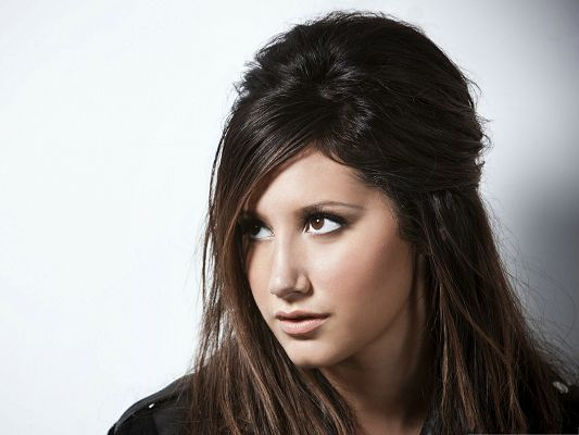 click to free download the wallpaper--Beautiful Photo Images, Ashley Tisdale in Brown Hair, Brave and Wild Beauty