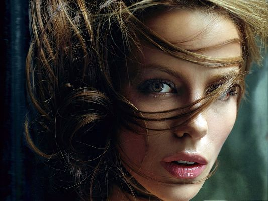click to free download the wallpaper--Beautiful Poster of Artists, Kate Beckinsale's Hair in a Mess, Blurry Eyesight