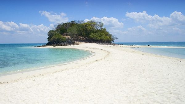 Beautiful Scene of Beach - The Blue and Clear Sea, White Sand and Green Plants in the Middle