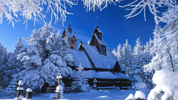 Beautiful Sceneries of Nature - Snow-Covered Houses and Tree Branches, Incredible Winter Scene