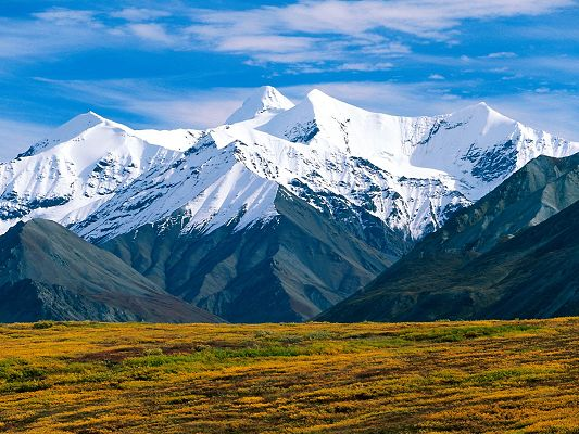 click to free download the wallpaper--Beautiful Sceneries of the World - Denali National Park Alaska in Pixel of 1600x1200, Snow-Capped and Tall Mountains, the Blue Sky