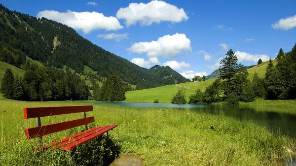 Beautiful Scenery of Nature - A Full Eye of Green Scene, a Red Wooden Chair is Truly Attractive
