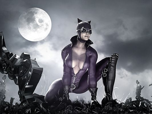 click to free download the wallpaper--Best Films Picture - Batman Arkham City, Mad Catwoman
