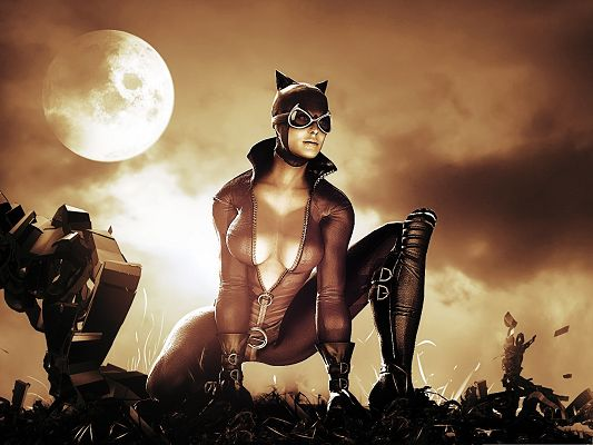click to free download the wallpaper--Best Movies Post - Batman Arkham City, the Sexy and Appealing Catwoman
