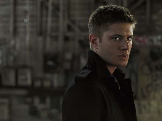 click to free download the wallpaper--Best Movies Wallpaper, Jensen Ackles In Supernatural, Handsome and Impressive